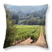 Sonoma Vineyards In The Sonoma California Wine Country 5d24515 Square Throw Pillow