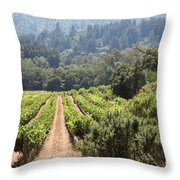 Sonoma Vineyards In The Sonoma California Wine Country 5d24518 Throw Pillow