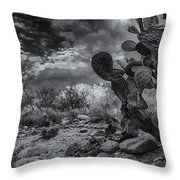 Sonoran Desert 15 Throw Pillow