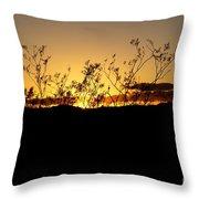 Sonoran Desert Sunset Throw Pillow