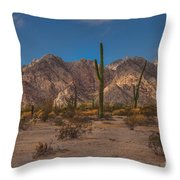 Sonoran  Throw Pillow