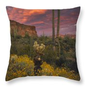 Sonoran Romance Throw Pillow
