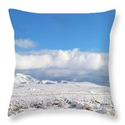 Soon Desert Water Throw Pillow