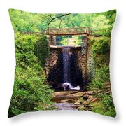 Soothing Cascade Throw Pillow