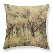 Soothing Desert Throw Pillow