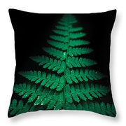 Soothing Fern Throw Pillow