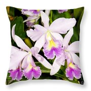 Sophronitis Orchid Throw Pillow