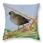 Sora Rail Throw Pillow