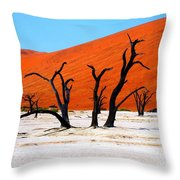 Sossusvlei Scene Throw Pillow