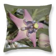 Soulful Star  Throw Pillow