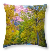 South Campground In Zion Np-ut Throw Pillow