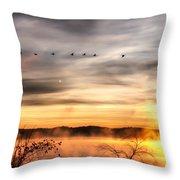South Carolina Morning Throw Pillow