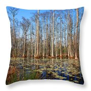 South Carolina Swamps Throw Pillow