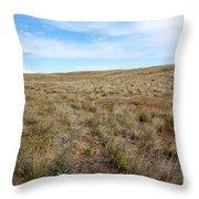South-central Washington Grassland Throw Pillow