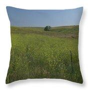 South Dakota Homestead Throw Pillow