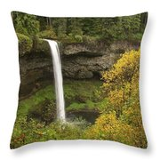 South Falls In Autumn Throw Pillow