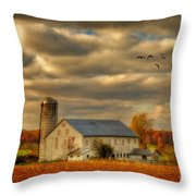 South For The Winter Throw Pillow by Lois Bryan