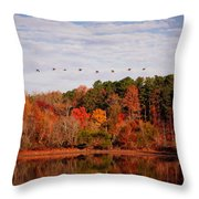 South For The Winter Throw Pillow
