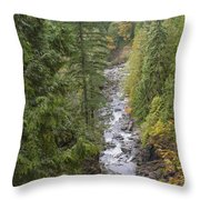 south fork Snoqualmie river Throw Pillow
