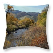 South Platte Throw Pillow