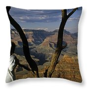 South Rim Grand Canyon Sunset Light On Rock Formations With Woma Throw Pillow