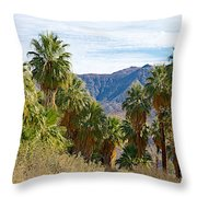 South Side View Of Andreas Canyon Trail In Indian Canyons-ca Throw Pillow