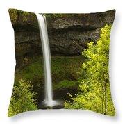 South Silver Falls 1 Throw Pillow