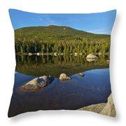South Turner Mountain Throw Pillow
