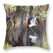 Southeast Missouri Swamp Throw Pillow