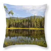 Southeast Summer Throw Pillow