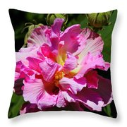 Southern Beauty Throw Pillow