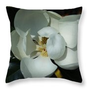 Southern Bell I Throw Pillow