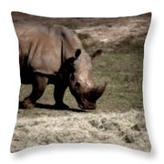 Southern Black Rhino Throw Pillow