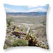 Southern California Desert Landscape Throw Pillow