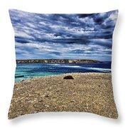 Southern Coastline V6 Throw Pillow