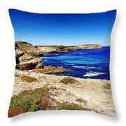 Southern Coastline V7 Throw Pillow