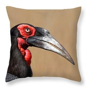 Southern Ground Hornbill Portrait Side View Throw Pillow