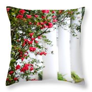 Southern Home - Digital Painting Throw Pillow