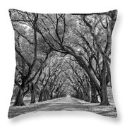 Southern Journey Bw Throw Pillow