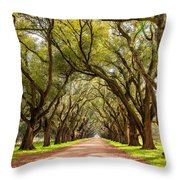 Southern Journey Paint Throw Pillow