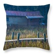 Southern Marsh Throw Pillow