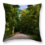 Southern Missouri Country Road I Throw Pillow
