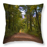 Southern Missouri Country Road II Throw Pillow