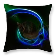 Southern Northern Lights Throw Pillow