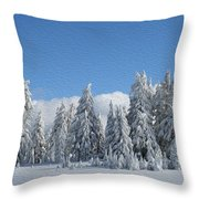 Southern Oregon Forest In Winter Throw Pillow