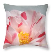 Southern Peppermint Beauty Throw Pillow