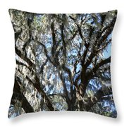 Southern Perspective - Mossy Live Oak Throw Pillow