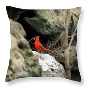 Southern Red Bird By The Flint River Throw Pillow