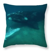 Southern Right Whale And Bottlenose Throw Pillow