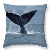 Southern Right Whale Fluke Argentina Throw Pillow